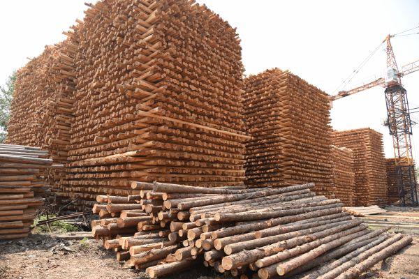 防腐木杆原材